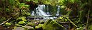 Horseshoe Falls, Mt Field National Park, Australia by Michael Boniwell