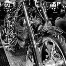 ride hard by Scott Curti