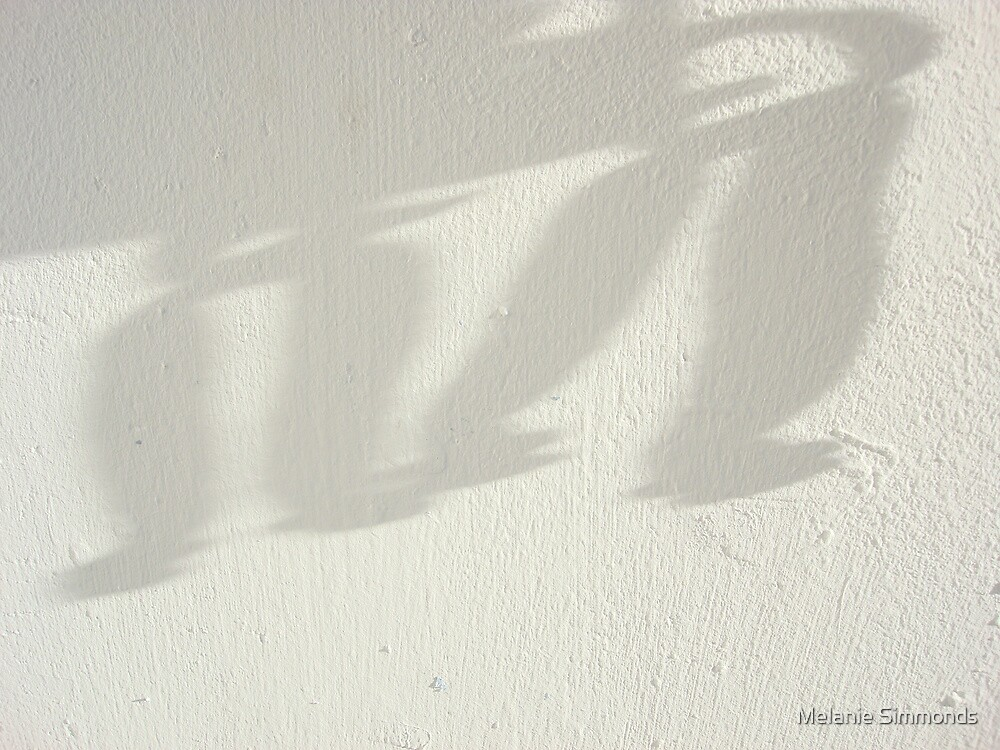 Batty Shadows by Melanie Simmonds