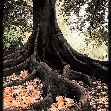 Botanic 'Tree' Garden by TimeScape