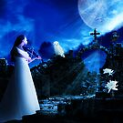 Moonlit by shall
