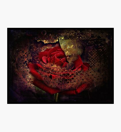Tainted Love  Photographic Print