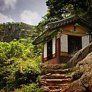Namsan Temple by Barbara  Brown