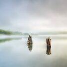 Alton Fog by Bruce Taylor