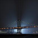 SPIDERMAN 4 vs The Williamsburg Bridge by James and Karla Murray