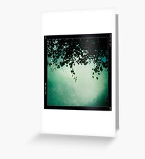 Vines on the Wire Greeting Card