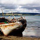 Three Wrecks by Lynne Morris