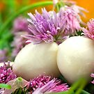 Chives Bloom and Mozzarella by SmoothBreeze7