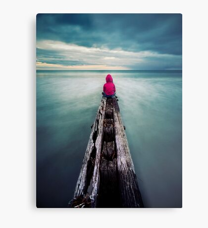 To have the world in front of you. Metal Print