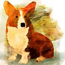 Corgi by carlydraws