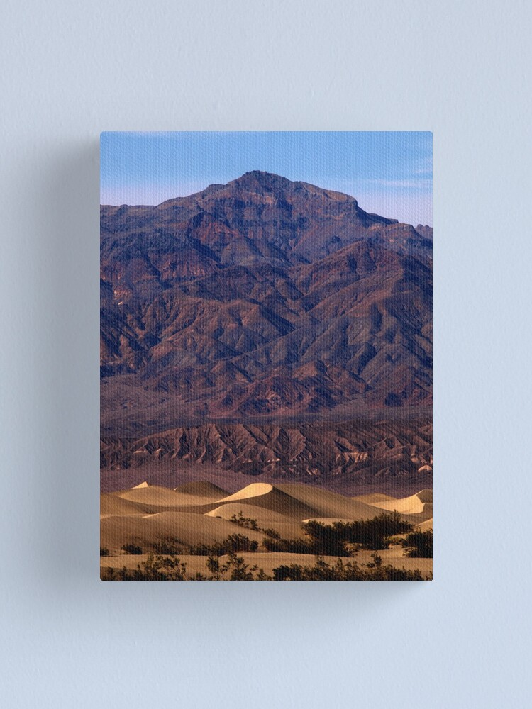 Alternate view of Mesquite and Mnt. Palmer Canvas Print
