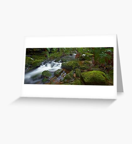 Flowing Moss - Blue Mountains NSW Greeting Card