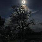 ranch house moon by Robert C Richmond