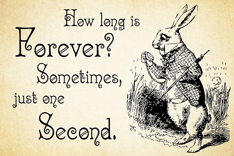 Alice In Wonderland Quote Custom Alice In Wonderland Quote  How Long Is Forever  White Rabbit