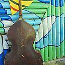 Solo bass - Baracoa, Cuba by fionapine