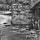 Water under the Bridge by RodneyCleasby