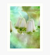 Bells Ring Out  Art Print