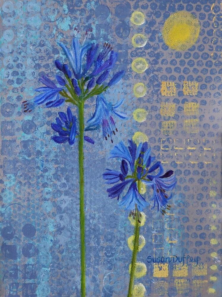 Agapanthus by Susan Duffey