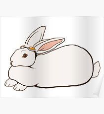 Goggles Bunny Poster