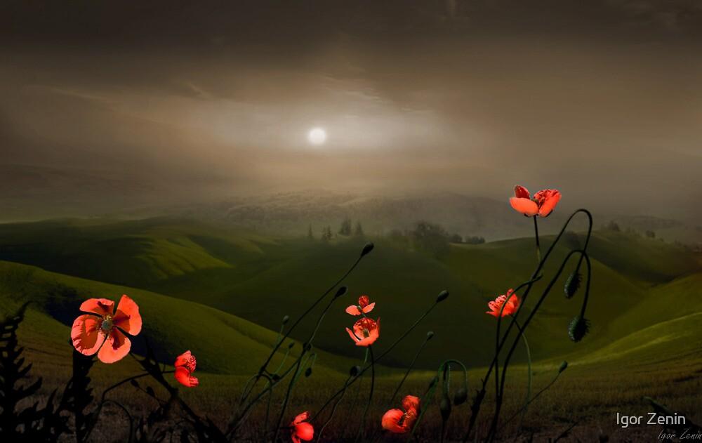 Haze On The Hills by Igor Zenin