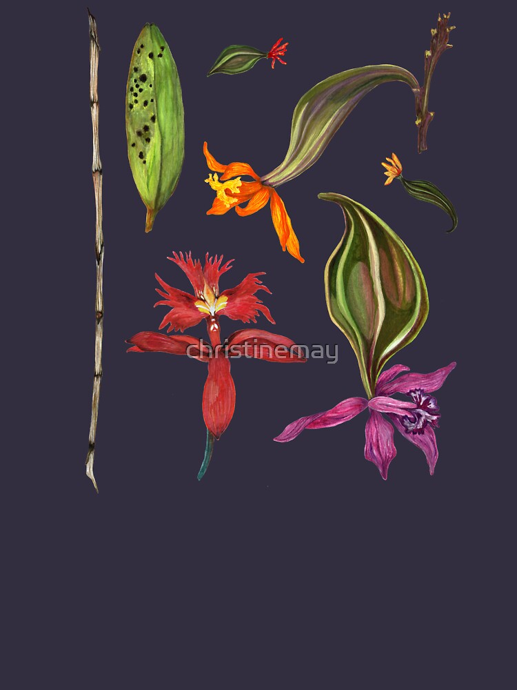 Orchids and Ink on Black by christinemay