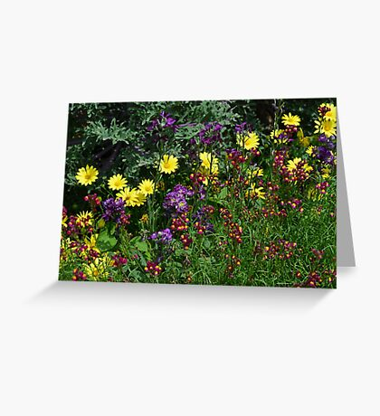 A Pretty Flower Setting in the Garden Greeting Card