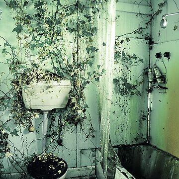 nature's bathroom by ishbel