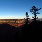 Silhouettes at North Rim by Aaron Baker