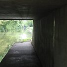 Light at the end of the tunnel (June 2011) by fatchickengirl