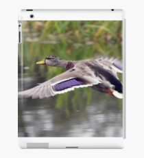 Duck Landing iPad Case/Skin