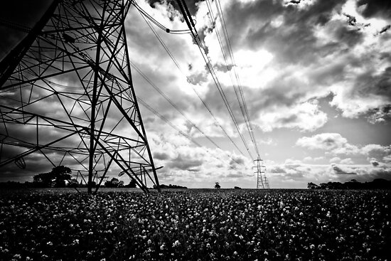 Pylon I by Richard Pitman
