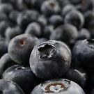 Sweet Blueberries by Barbara Morrison