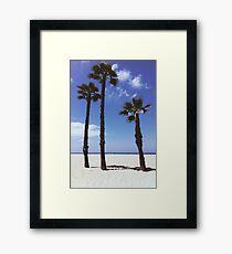 Palm Tree Family Framed Print