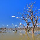 Eight Mile Lagoon, Bourke by Richard  Windeyer