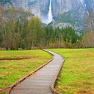 Yosemite waterfall - California by fionapine