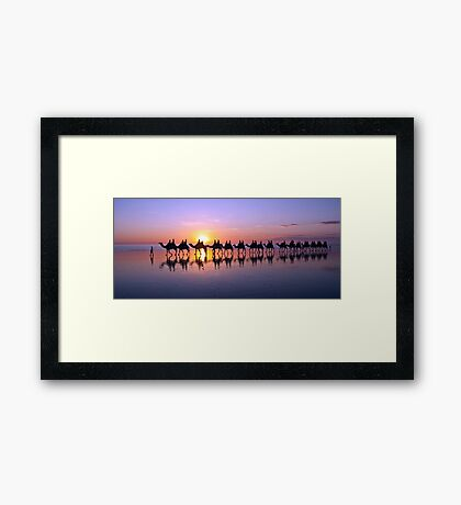 Iconic Camels on Cable Beach Framed Print