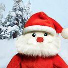 Portrait of Santa by Heather Friedman