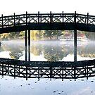 Lake Daylesford silhouette by Victor Pugatschew
