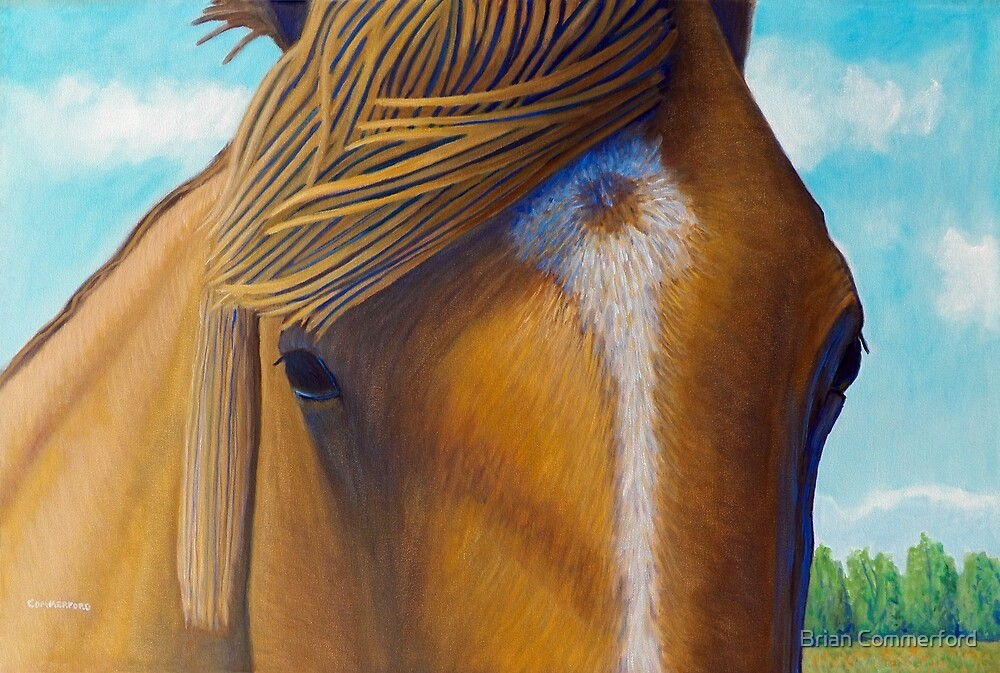 Open Range by Brian Commerford