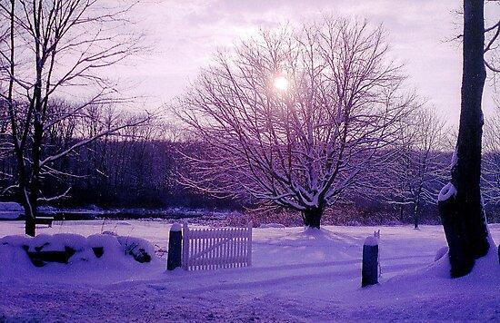 Winter in New England by Alberto  DeJesus