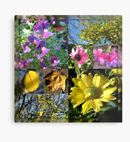 Autumn Leaves and Flowers Collage in Mirrored Frame Metallbild
