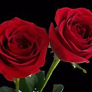 When 2 R In love by Mary Ann Battle