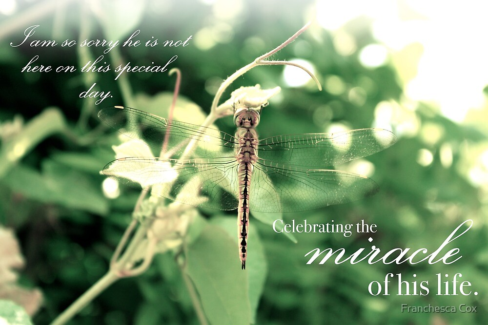 Celebrating the Miracle of His Life - Birthday or Special Date by Franchesca Cox