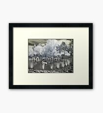 Alien Garden 1 - Horticulture on Another Planet Framed Print