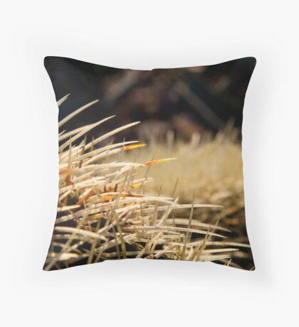 Cactus Pouf Throw Pillow