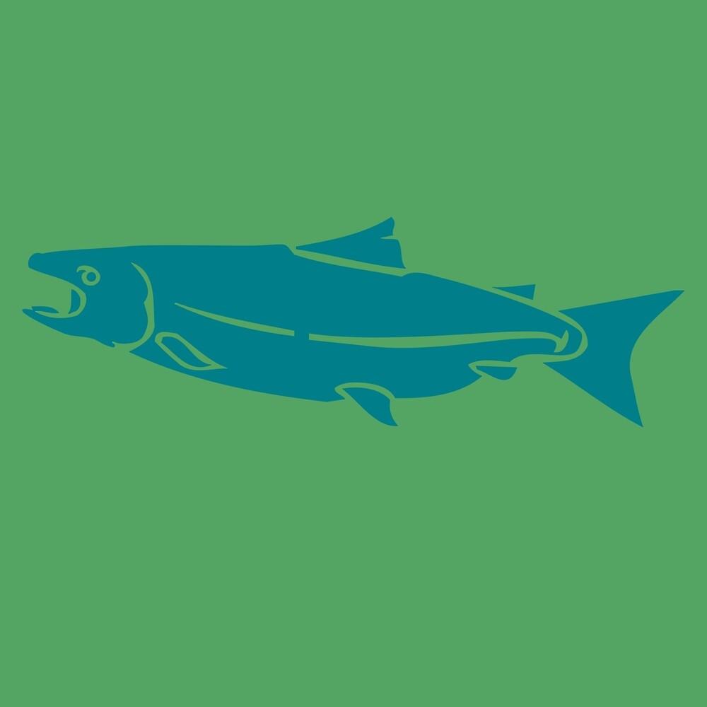 Salmon by James Hindermeier