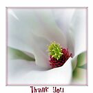 Thank You Card by Astrid Ewing Photography