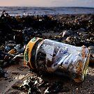 Message in a bottle  by Ian Reeley
