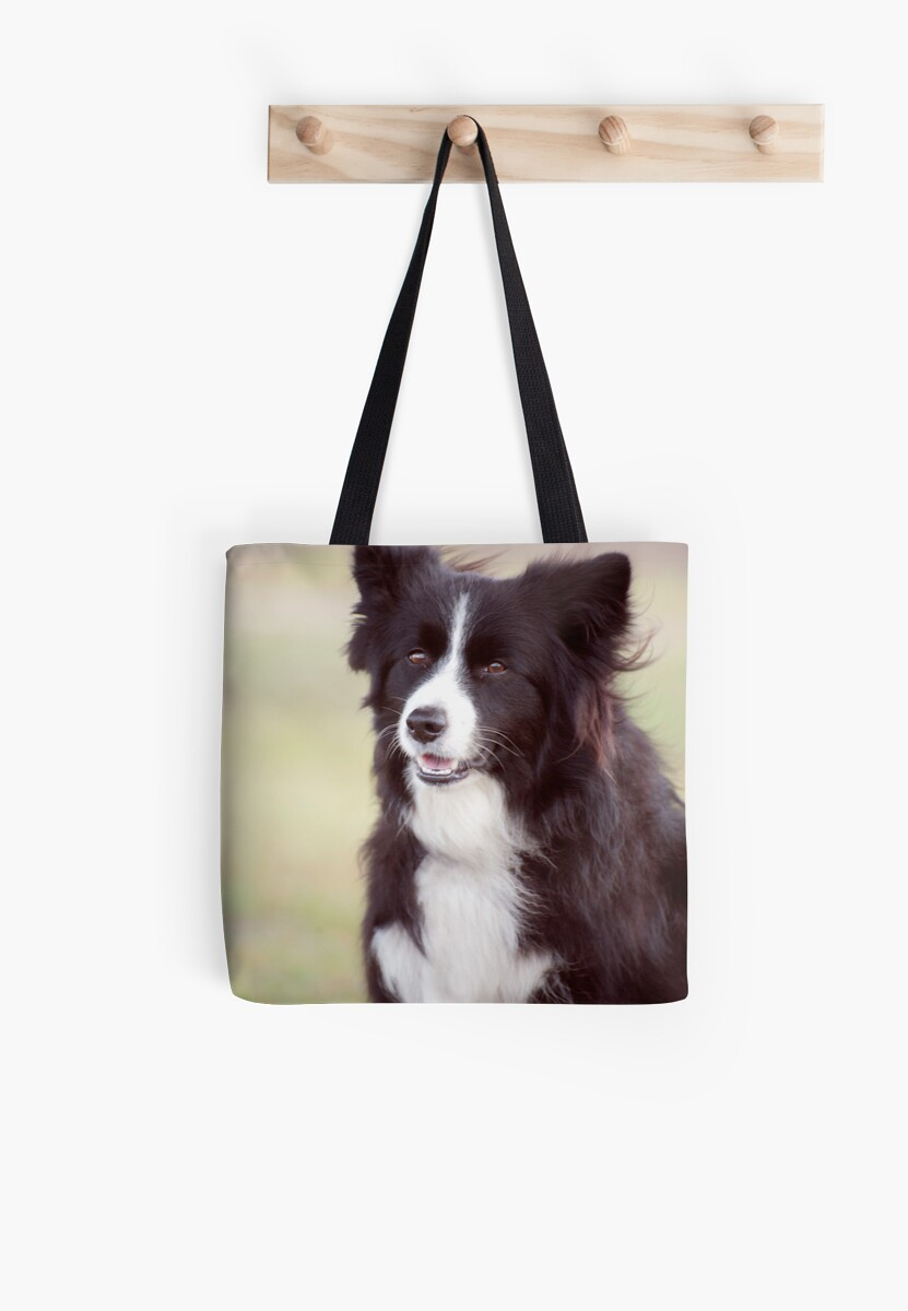Smiley Face - border collie by Jenny Dean