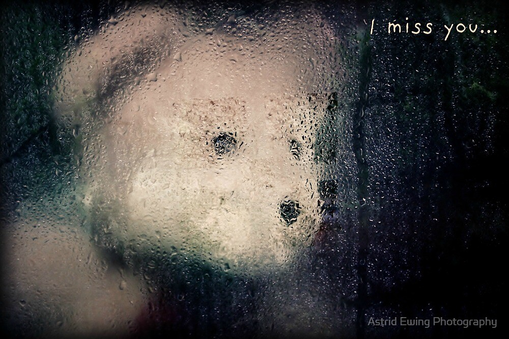 I Miss You Card by Astrid Ewing Photography